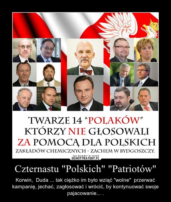 """Czternastu """"Polskich"""" """"Patriotów"""" – Korwin,  Duda ... tak ciężko im było wziąć """"wolne""""  przerwać kampanię, jechać, zagłosować i wrócić, by kontynuować swoje pajacowanie... ."""