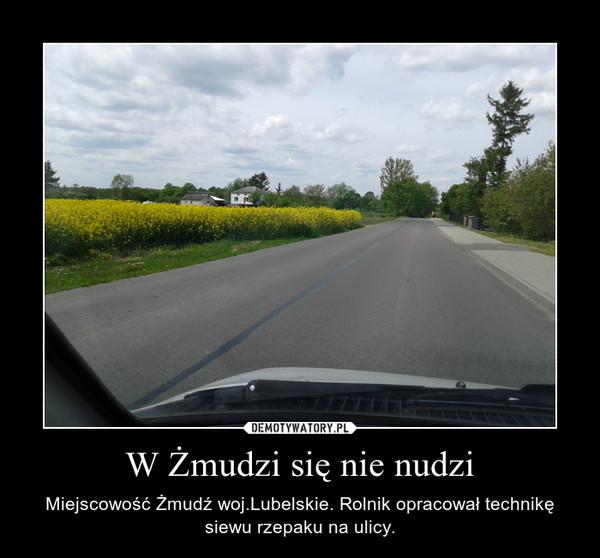 W Żmudzi się nie nudzi – Miejscowość Żmudź woj.Lubelskie. Rolnik opracował technikę siewu rzepaku na ulicy.
