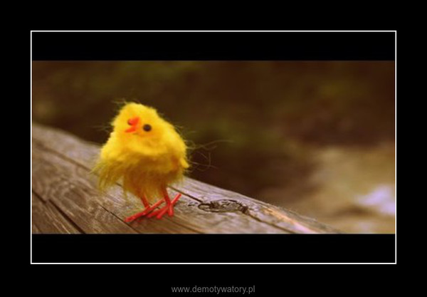 Chick Eastwood –