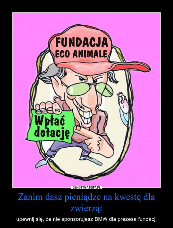 Zanim dasz pieniądze na kwestę dla zwierząt – upewnij się, że nie sponsorujesz BMW dla prezesa fundacji