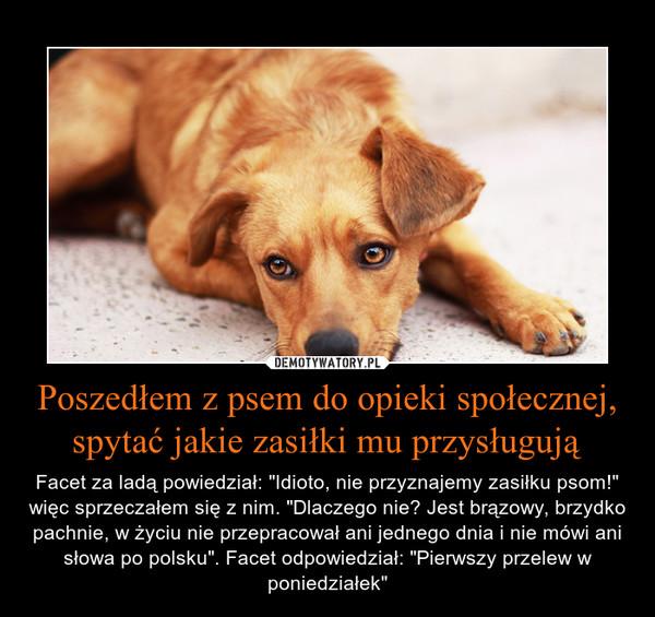 """Poszedłem z psem do opieki społecznej, spytać jakie zasiłki mu przysługują – Facet za ladą powiedział: """"Idioto, nie przyznajemy zasiłku psom!"""" więc sprzeczałem się z nim. """"Dlaczego nie? Jest brązowy, brzydko pachnie, w życiu nie przepracował ani jednego dnia i nie mówi ani słowa po polsku"""". Facet odpowiedział: """"Pierwszy przelew w poniedziałek"""""""