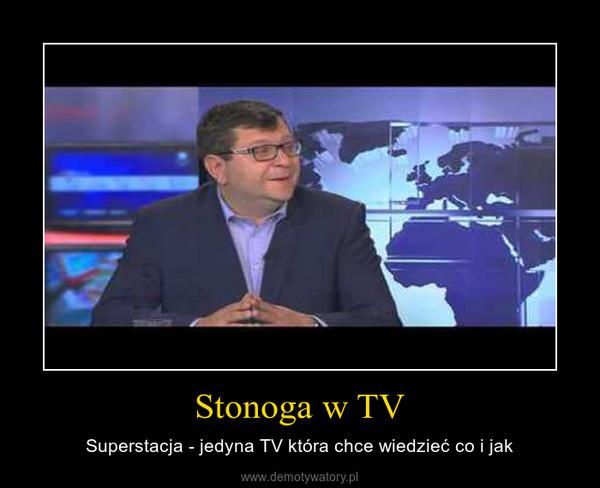Stonoga w TV – Superstacja - jedyna TV która chce wiedzieć co i jak