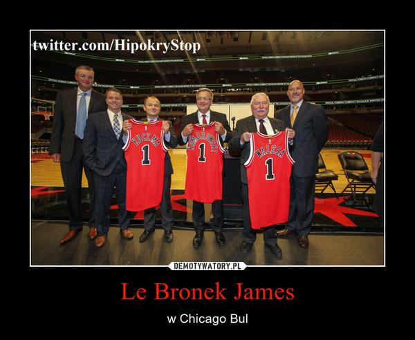 Le Bronek James – w Chicago Bul