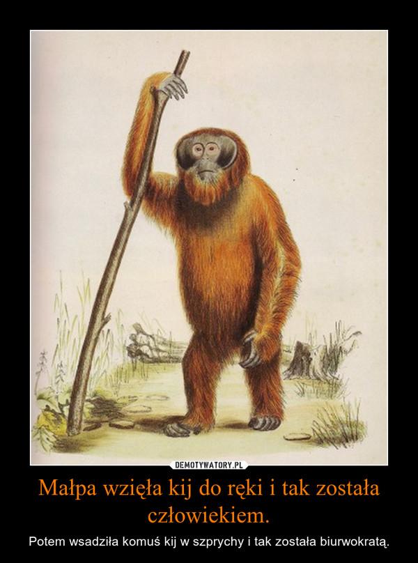 Małpa wzięła kij do ręki i tak została człowiekiem. – Potem wsadziła komuś kij w szprychy i tak została biurwokratą.