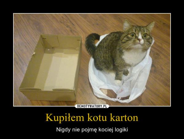 Kupiłem kotu karton – Nigdy nie pojmę kociej logiki