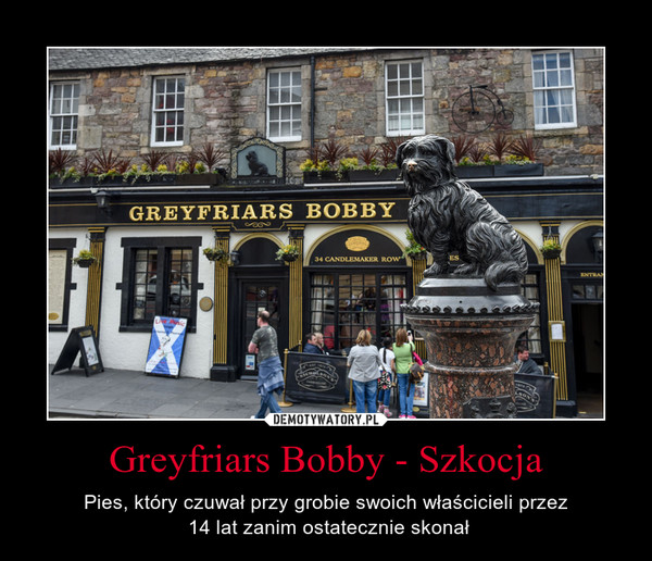 Greyfriars Bobby - Szkocja – Pies, który czuwał przy grobie swoich właścicieli przez 14 lat zanim ostatecznie skonał
