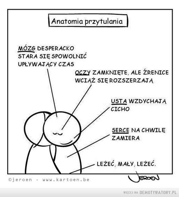 Anatomia przytulania –