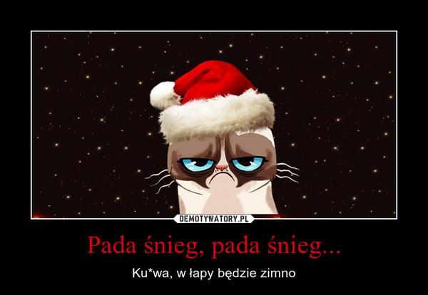 Pada śnieg, pada śnieg... – Ku*wa, w łapy będzie zimno
