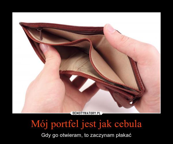 Mój portfel jest jak cebula – Gdy go otwieram, to zaczynam płakać