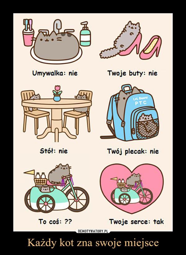Każdy kot zna swoje miejsce –