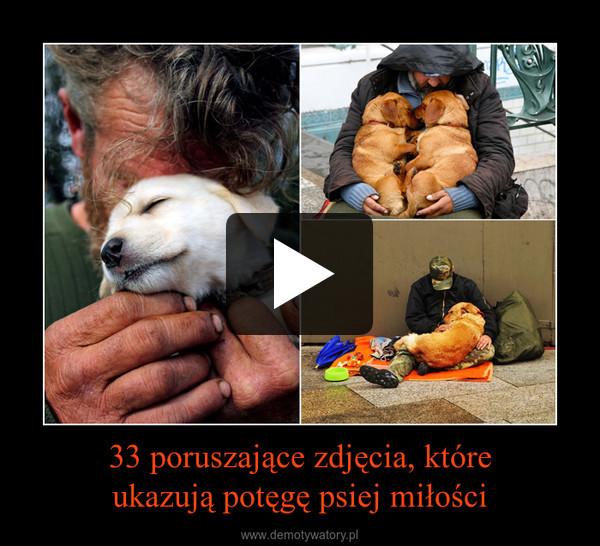 33 poruszające zdjęcia, któreukazują potęgę psiej miłości –