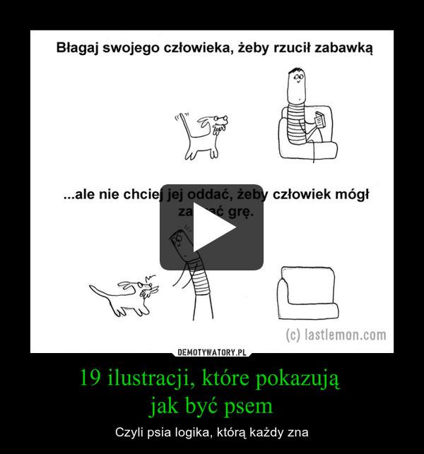 19 ilustracji, które pokazują  jak być psem