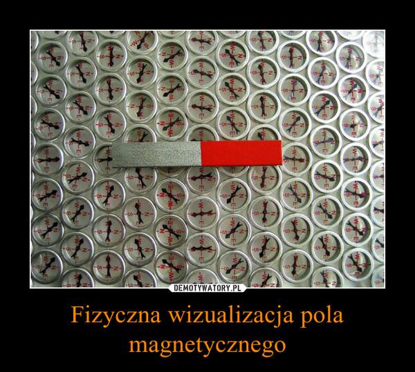Fizyczna wizualizacja pola magnetycznego –