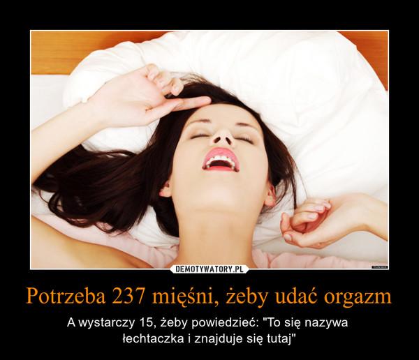 """Potrzeba 237 mięśni, żeby udać orgazm – A wystarczy 15, żeby powiedzieć: """"To się nazywa łechtaczka i znajduje się tutaj"""""""