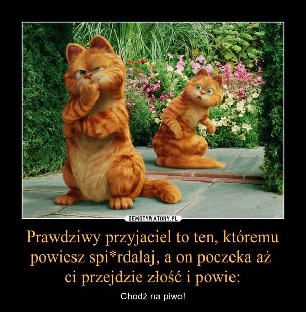 Prawdziwy przyjaciel to ten, któremu powiesz spi*rdalaj, a on poczeka aż ci przejdzie złość i powie: – Chodź na piwo!