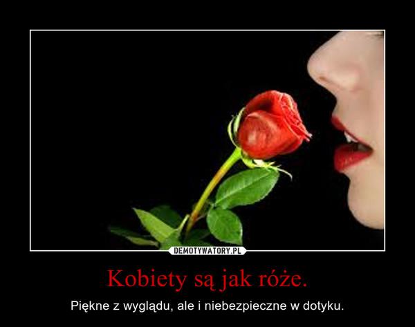 Kobiety są jak róże. – Piękne z wyglądu, ale i niebezpieczne w dotyku.
