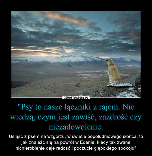 """""""Psy to nasze łączniki z rajem. Nie wiedzą, czym jest zawiść, zazdrość czy niezadowolenie. – Usiąść z psem na wzgórzu, w świetle popołudniowego słońca, to jak znaleźć się na powrót w Edenie, kiedy tak zwane nicnierobienie daje radość i poczucie głębokiego spokoju"""""""