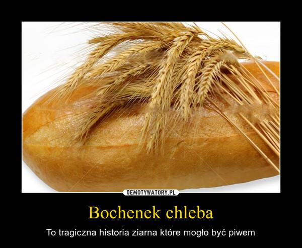 Bochenek chleba – To tragiczna historia ziarna które mogło być piwem