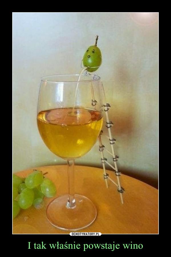 I tak właśnie powstaje wino –