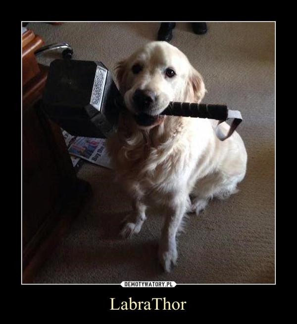 LabraThor –