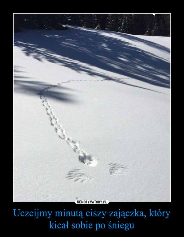 Uczcijmy minutą ciszy zajączka, który kicał sobie po śniegu –