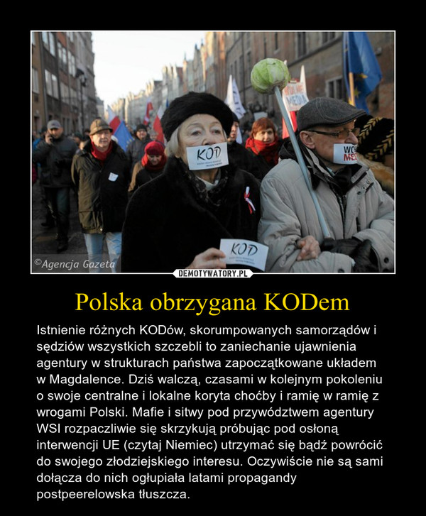 Polska obrzygana KODem – Istnienie różnych KODów, skorumpowanych samorządów i sędziów wszystkich szczebli to zaniechanie ujawnienia agentury w strukturach państwa zapoczątkowane układem w Magdalence. Dziś walczą, czasami w kolejnym pokoleniu o swoje centralne i lokalne koryta choćby i ramię w ramię z wrogami Polski. Mafie i sitwy pod przywództwem agentury WSI rozpaczliwie się skrzykują próbując pod osłoną interwencji UE (czytaj Niemiec) utrzymać się bądź powrócić do swojego złodziejskiego interesu. Oczywiście nie są sami dołącza do nich ogłupiała latami propagandy postpeerelowska tłuszcza.