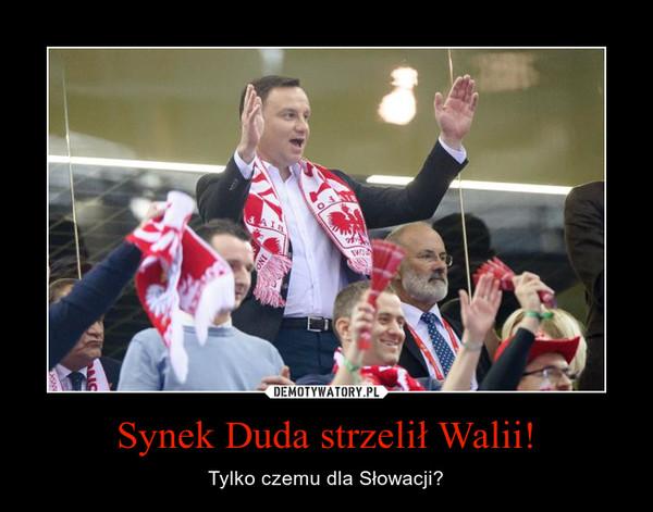 Synek Duda strzelił Walii! – Tylko czemu dla Słowacji?