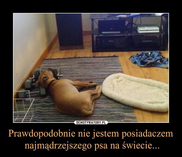 Prawdopodobnie nie jestem posiadaczem najmądrzejszego psa na świecie... –