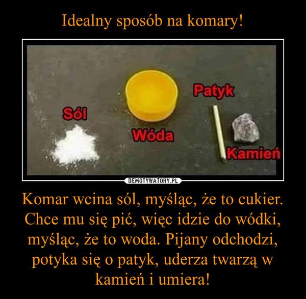 Komar wcina sól, myśląc, że to cukier. Chce mu się pić, więc idzie do wódki, myśląc, że to woda. Pijany odchodzi, potyka się o patyk, uderza twarzą w kamień i umiera! –