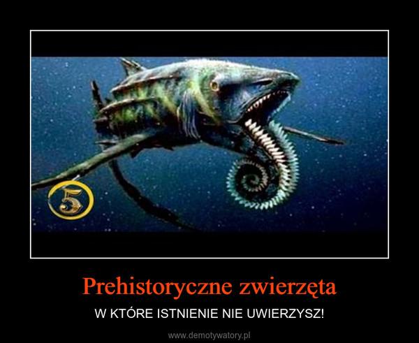 Prehistoryczne zwierzęta – W KTÓRE ISTNIENIE NIE UWIERZYSZ!