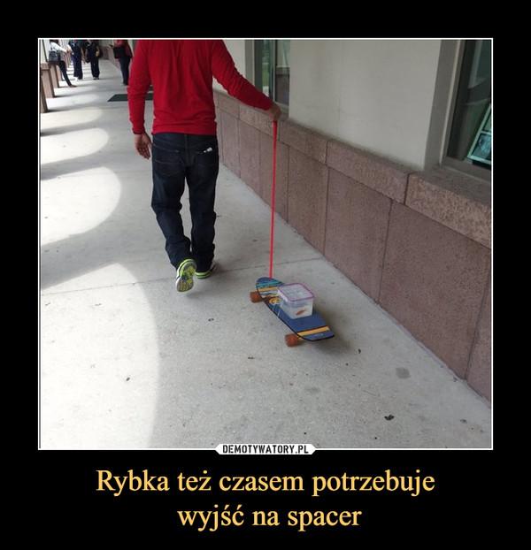 Rybka też czasem potrzebuje wyjść na spacer –