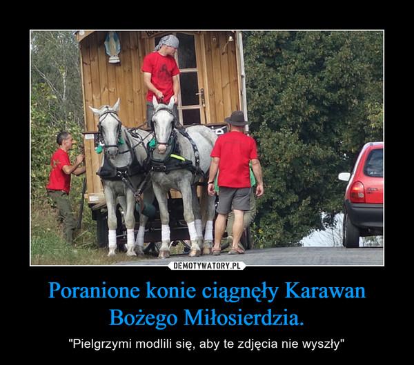 """Poranione konie ciągnęły Karawan Bożego Miłosierdzia. – """"Pielgrzymi modlili się, aby te zdjęcia nie wyszły"""""""