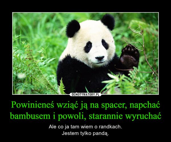 Powinieneś wziąć ją na spacer, napchać bambusem i powoli, starannie wyruchać – Ale co ja tam wiem o randkach.Jestem tylko pandą.