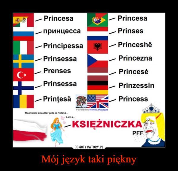 Mój język taki piękny –  Princesa -/ Princesanpnnuecca , Prinses-Principessa -/ PrinceshePrinsessa _/ PrinceznaPrenses , PrincesePrinsessa -/ PrinzessinPrintesa / PrincessKSIĘZNICZKAPFF!