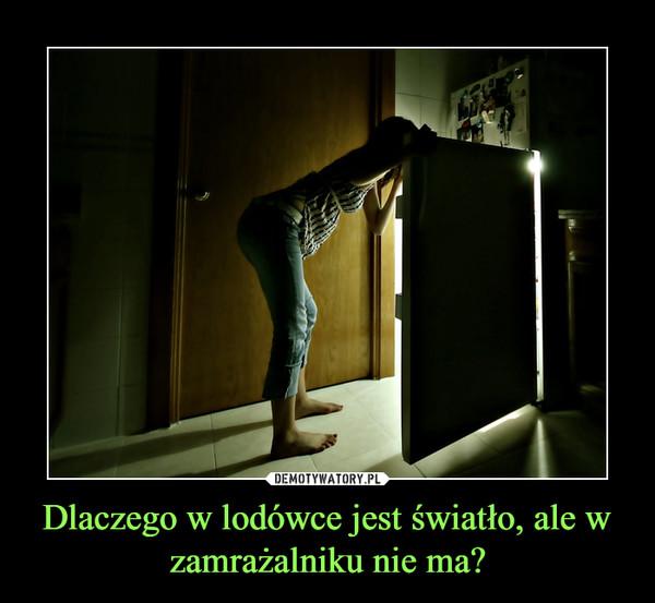Dlaczego w lodówce jest światło, ale w zamrażalniku nie ma? –