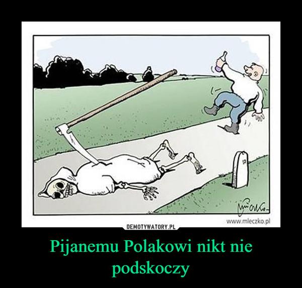 Pijanemu Polakowi nikt nie podskoczy –