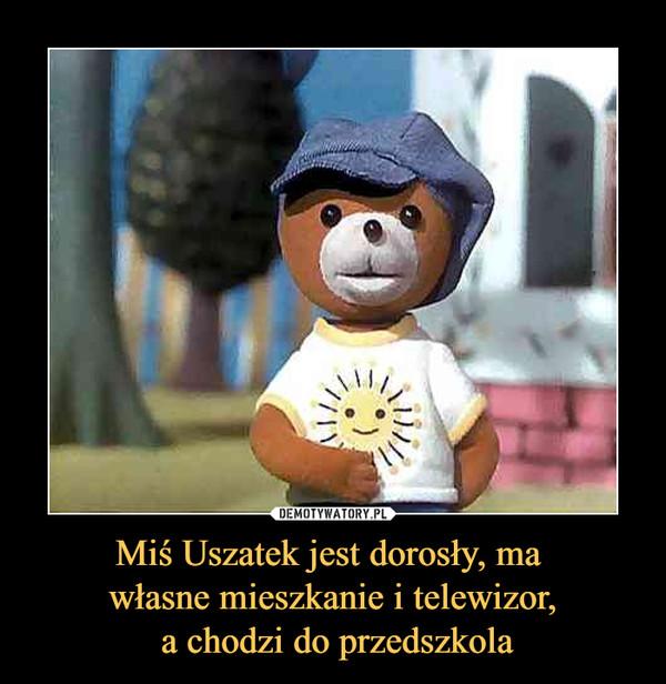 Miś Uszatek jest dorosły, ma własne mieszkanie i telewizor, a chodzi do przedszkola –