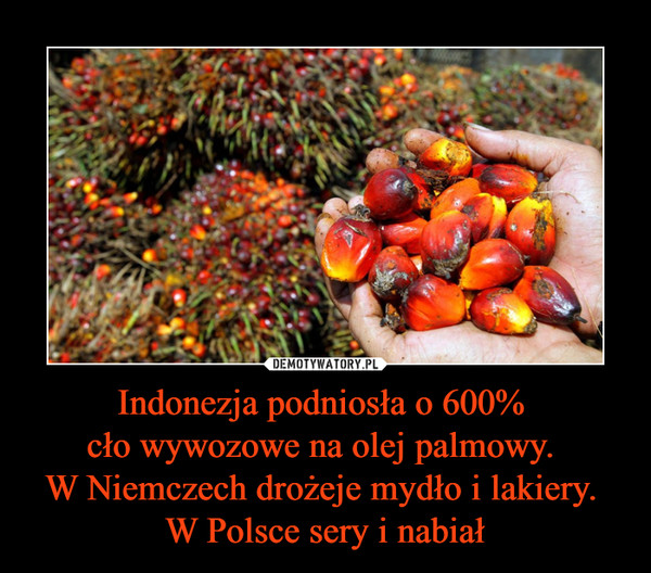 Indonezja podniosła o 600% cło wywozowe na olej palmowy. W Niemczech drożeje mydło i lakiery. W Polsce sery i nabiał –
