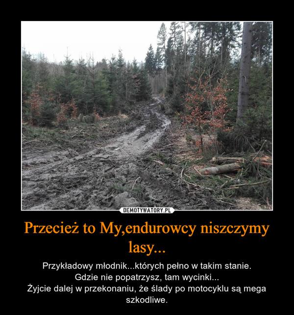 Przecież to My,endurowcy niszczymy lasy... – Przykładowy młodnik...których pełno w takim stanie.Gdzie nie popatrzysz, tam wycinki...Żyjcie dalej w przekonaniu, że ślady po motocyklu są mega szkodliwe.