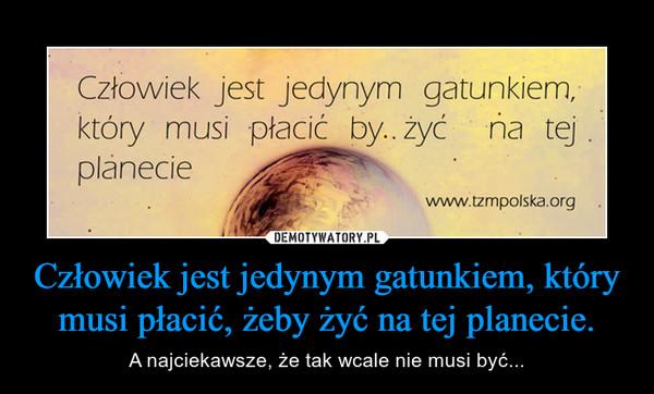 Człowiek jest jedynym gatunkiem, który musi płacić, żeby żyć na tej planecie. – A najciekawsze, że tak wcale nie musi być...