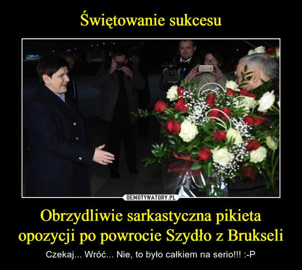 Obrzydliwie sarkastyczna pikieta opozycji po powrocie Szydło z Brukseli – Czekaj... Wróć... Nie, to było całkiem na serio!!! :-P