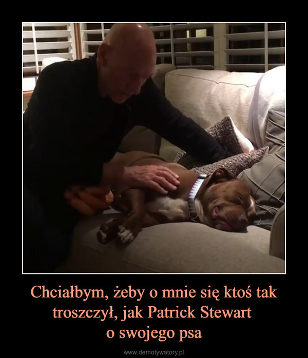 Chciałbym, żeby o mnie się ktoś tak troszczył, jak Patrick Stewart o swojego psa –
