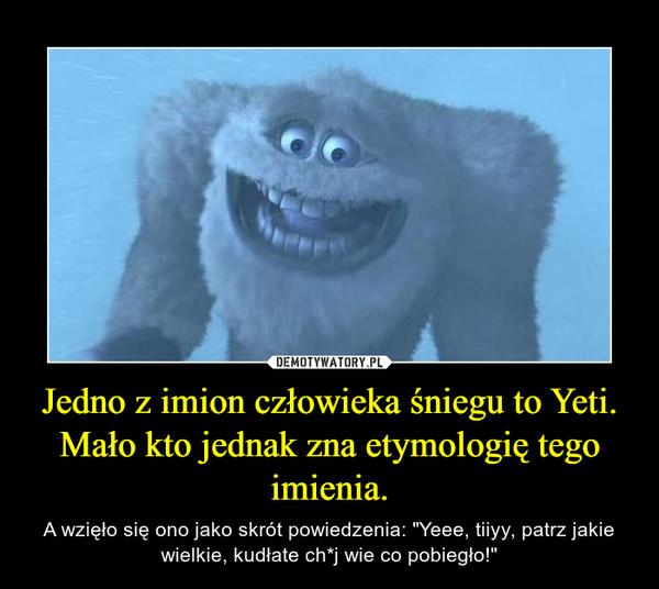 """Jedno z imion człowieka śniegu to Yeti. Mało kto jednak zna etymologię tego imienia. – A wzięło się ono jako skrót powiedzenia: """"Yeee, tiiyy, patrz jakie wielkie, kudłate ch*j wie co pobiegło!"""""""