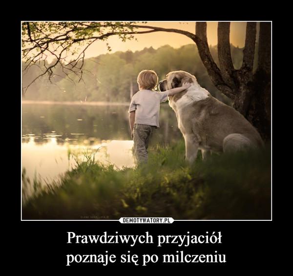 Prawdziwych przyjaciół poznaje się po milczeniu –