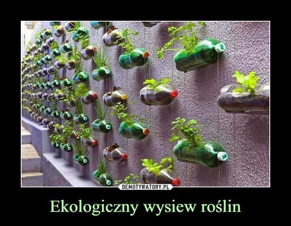 Ekologiczny wysiew roślin –