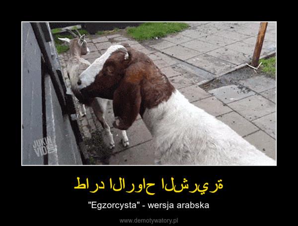 """طارد الارواح الشريرة – """"Egzorcysta"""" - wersja arabska"""