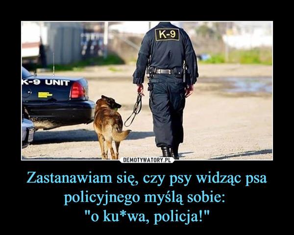 """Zastanawiam się, czy psy widząc psa policyjnego myślą sobie: """"o ku*wa, policja!"""" –"""