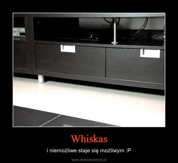 Whiskas – i niemożliwe staje się możliwym :P