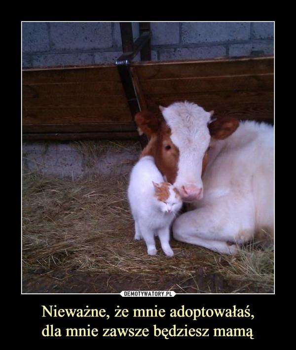 Nieważne, że mnie adoptowałaś,dla mnie zawsze będziesz mamą –