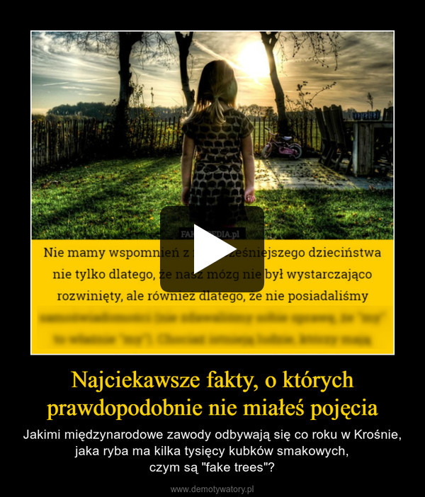 """Najciekawsze fakty, o którychprawdopodobnie nie miałeś pojęcia – Jakimi międzynarodowe zawody odbywają się co roku w Krośnie, jaka ryba ma kilka tysięcy kubków smakowych,czym są """"fake trees""""?"""